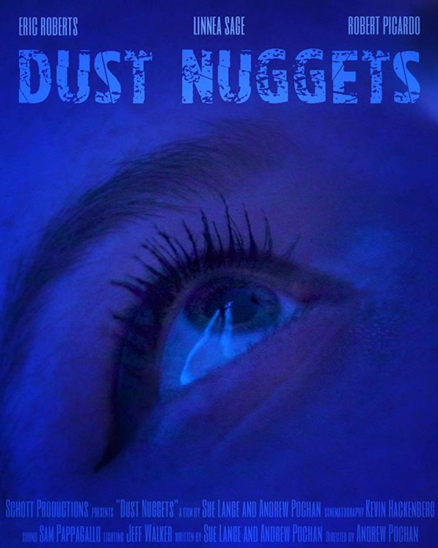dust nuggets poster