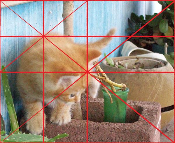 origional-kitty005