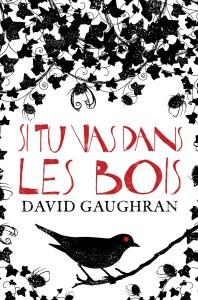 David Gaughran