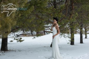 Anna_Lang_Bridal_Models_Chris_Jensen_Studios_Winnipeg_Wedding_Photography (337)