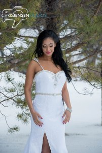 Anna_Lang_Bridal_Models_Chris_Jensen_Studios_Winnipeg_Wedding_Photography (375)