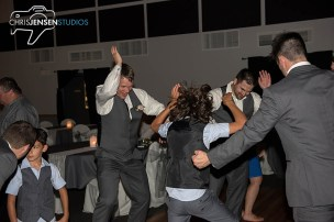 party-wedding-photos-229