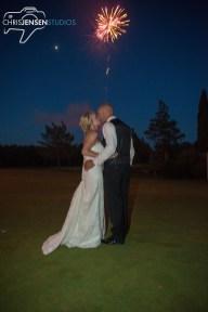 party-wedding-photos-245