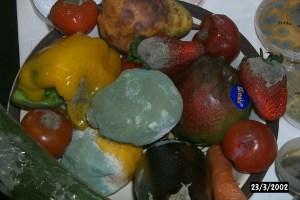 rotting produce