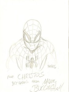 Bristol - May 2001: Spider-Man by Mark Buckingham