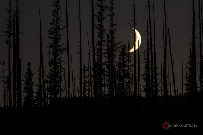 Dead Moon, Glacier National Park, MT