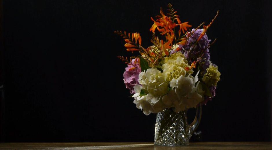 filming flowers