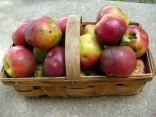 Organic non-sprayed apples