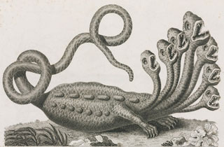 Vintage Illustration of a Seven-Headed Hydra