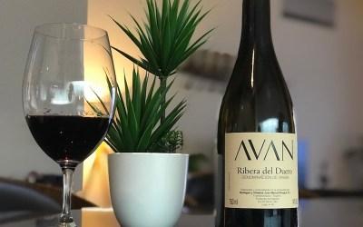 Bodegas y Viñedos Juan Manuel Burgos, Avan Tinto, 2018