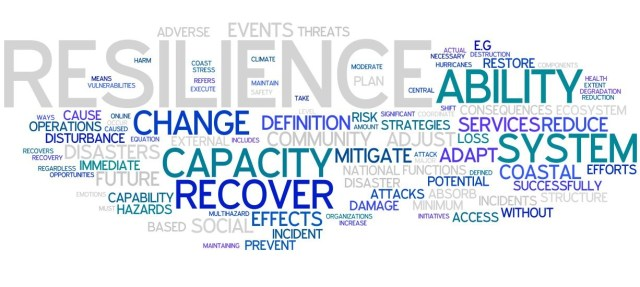 Defining resilience wordcloud