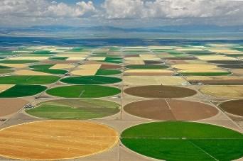 Industrial Irrigation