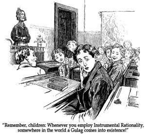 Instrumental rationality