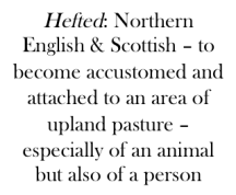 hefted-meaning