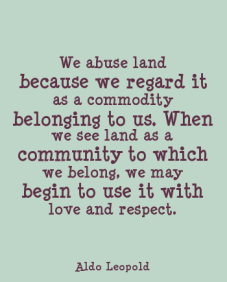 land-to-which-we-belong