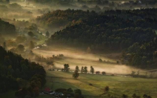landscape-nature-mist-valley-morning-forest-farm-field-trees-hill-748x468
