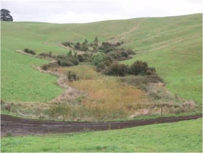 Wetlands on farms