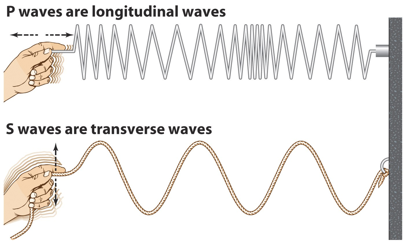 Properties Of Waves And Wave Cycles Scalar Transverse