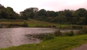 A large pond surrounded by green banks and reeds. The sky is overcast.