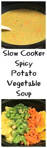 Vegetarian Slow Cooker Spicy Potato Vegetable Soup