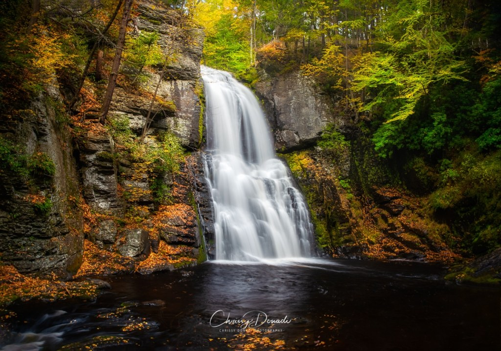 Autumn trees and leaves hugging the waterfall cascades in the Poconos