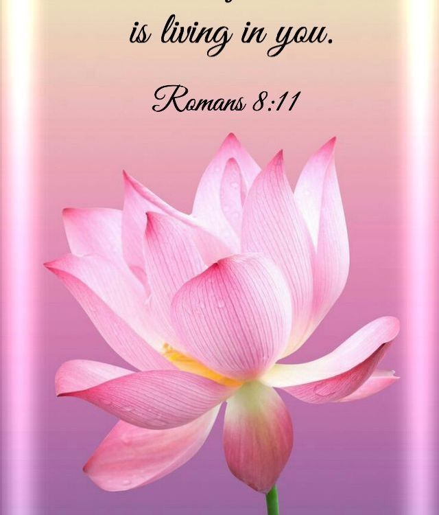 Bible Verses About Faith:Romans 8:11 NLT 11 The Spirit of God, who raised Jesus ...