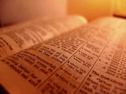 The Holy Bible - Numbers Chapter 25 (King James Version)