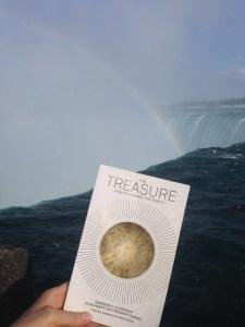 Treasuring Niagara Falls - The Treasure How to Change the World