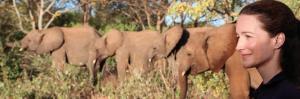 "Elephants Kristin Davis ""Treasure - Change the World Tour"""