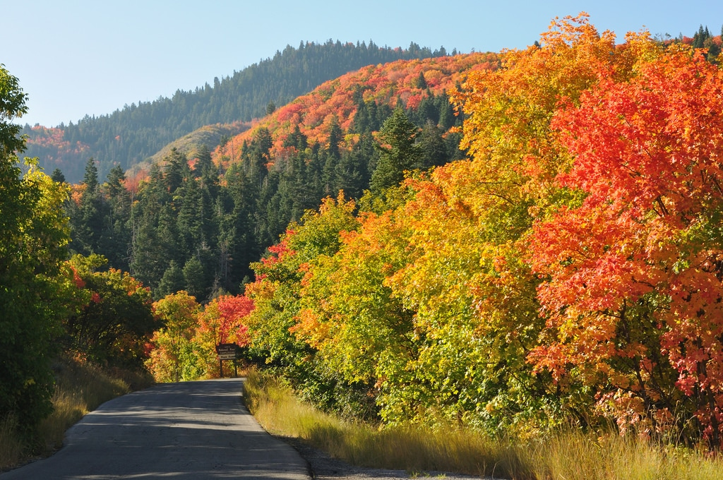 scenic drives near salt lake nebo loop