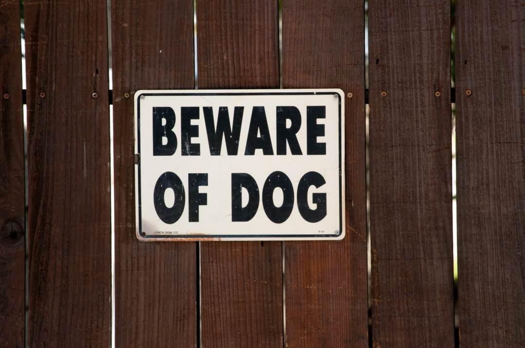 Utah Dog Bite Attorney