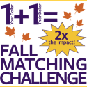 Fall Matching Challenge 2018: Hear from a Partner