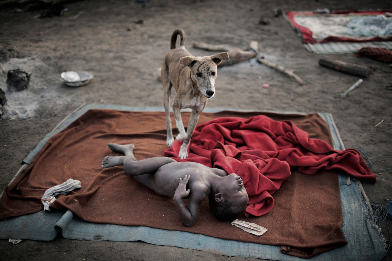In the early morning a dog watches over a child sleeping on a blanket in Doro refugee camp. With so many people arriving at the camp the newly arrived don't get immediate access to tents or even tarpaulins. As a result they sleep in the open.