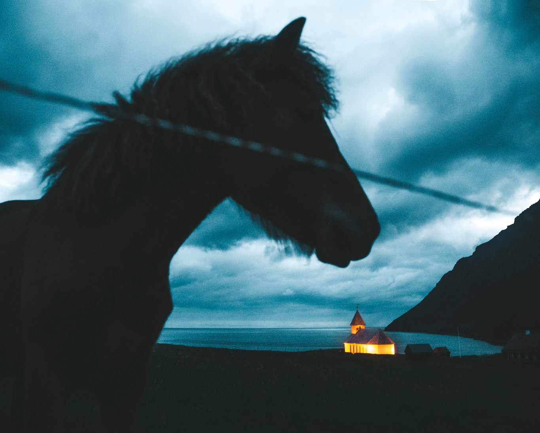 Faroe022