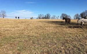 February 2016: Lexington, Kentucky