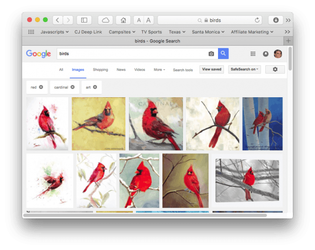 Google image search for pictures of birds, that are red, and are art.