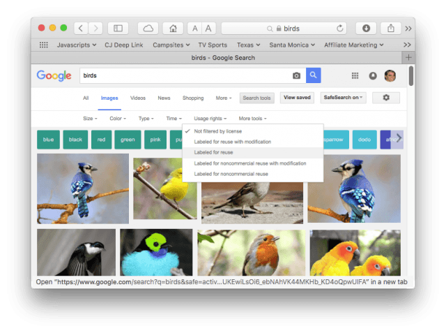 Google image search for pictures of birds, labeled for reuse.