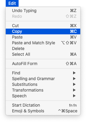 Edit menu with Copy selected
