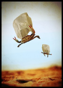 P02_plasti-crab-airship