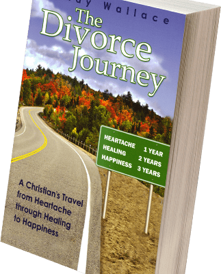The Divorce Journey