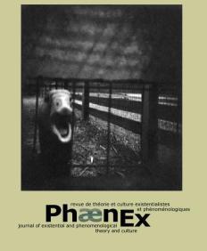 Phaenex 2007 cover 3