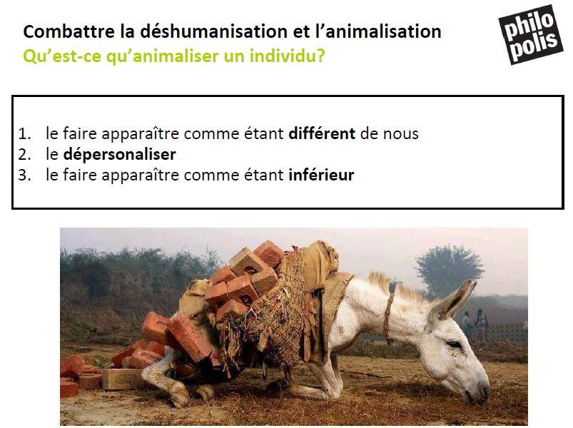 animalisation