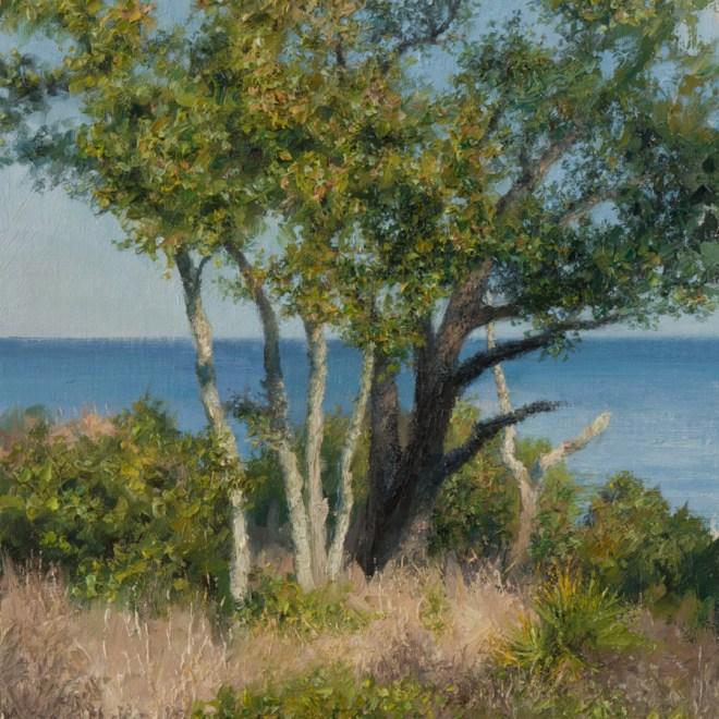 Oil painting entitled Live Oak Cluster, by artist Christian Hemme.