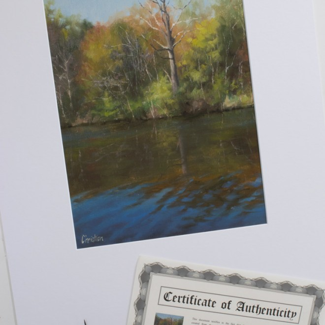 Azure Reflections print with Certificate of Authenticity