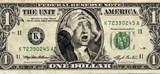 funny photo dollar