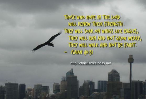 Isaiah 40 Those Who Hope in Lord Shall Renew their strength