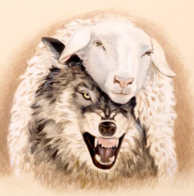 wolf in sheep clothing - false teachers, false prophets