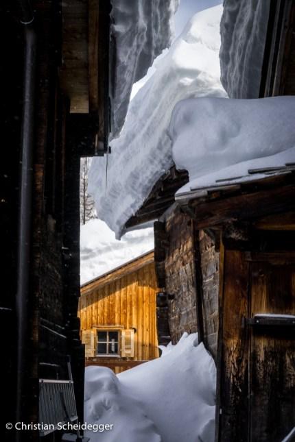 Winter Insights