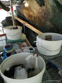 Werkzeuge und Restaurationsmittel auf dem engen Gerüst