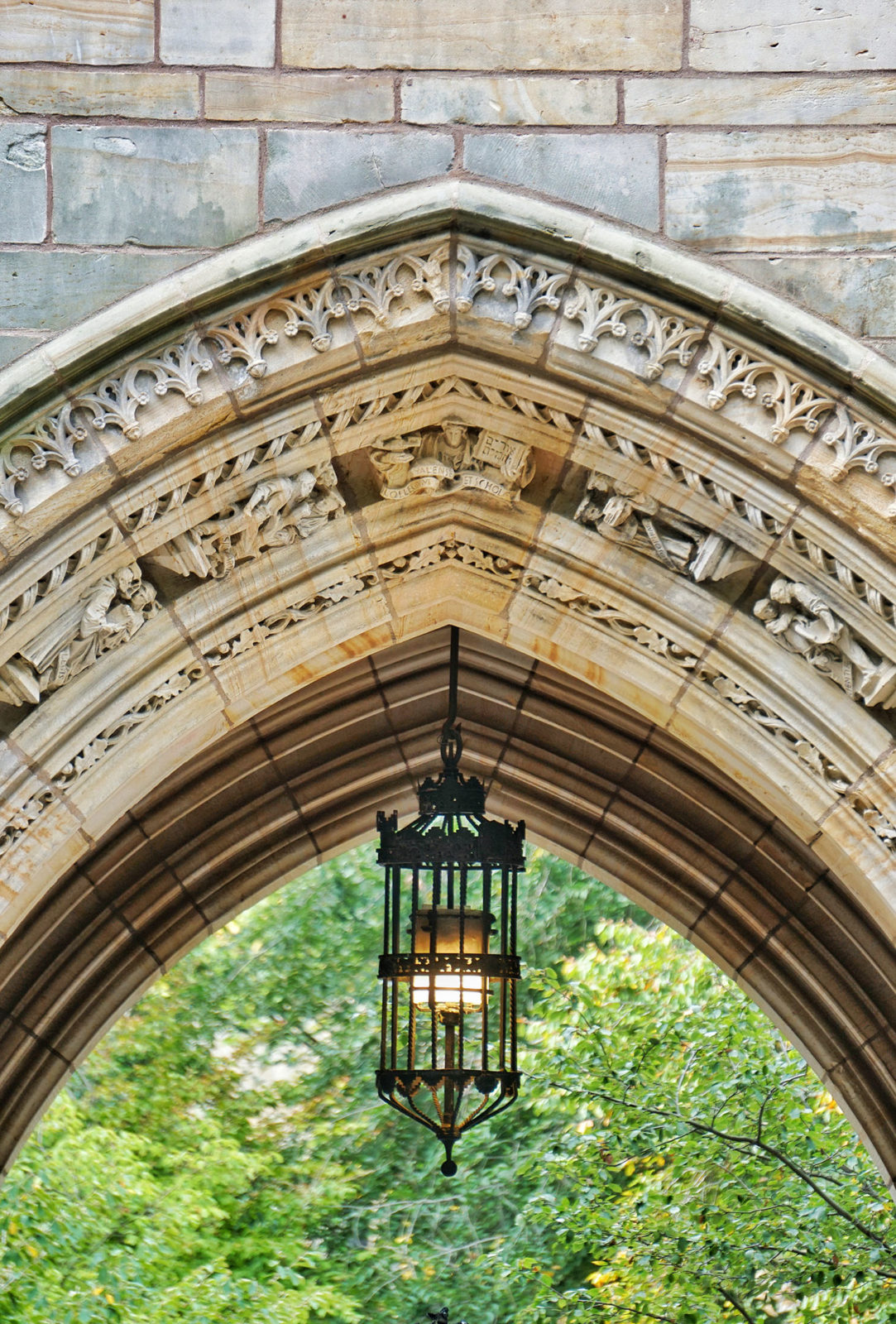 What is the State of the Evangelical Mind on Christian College Campuses?
